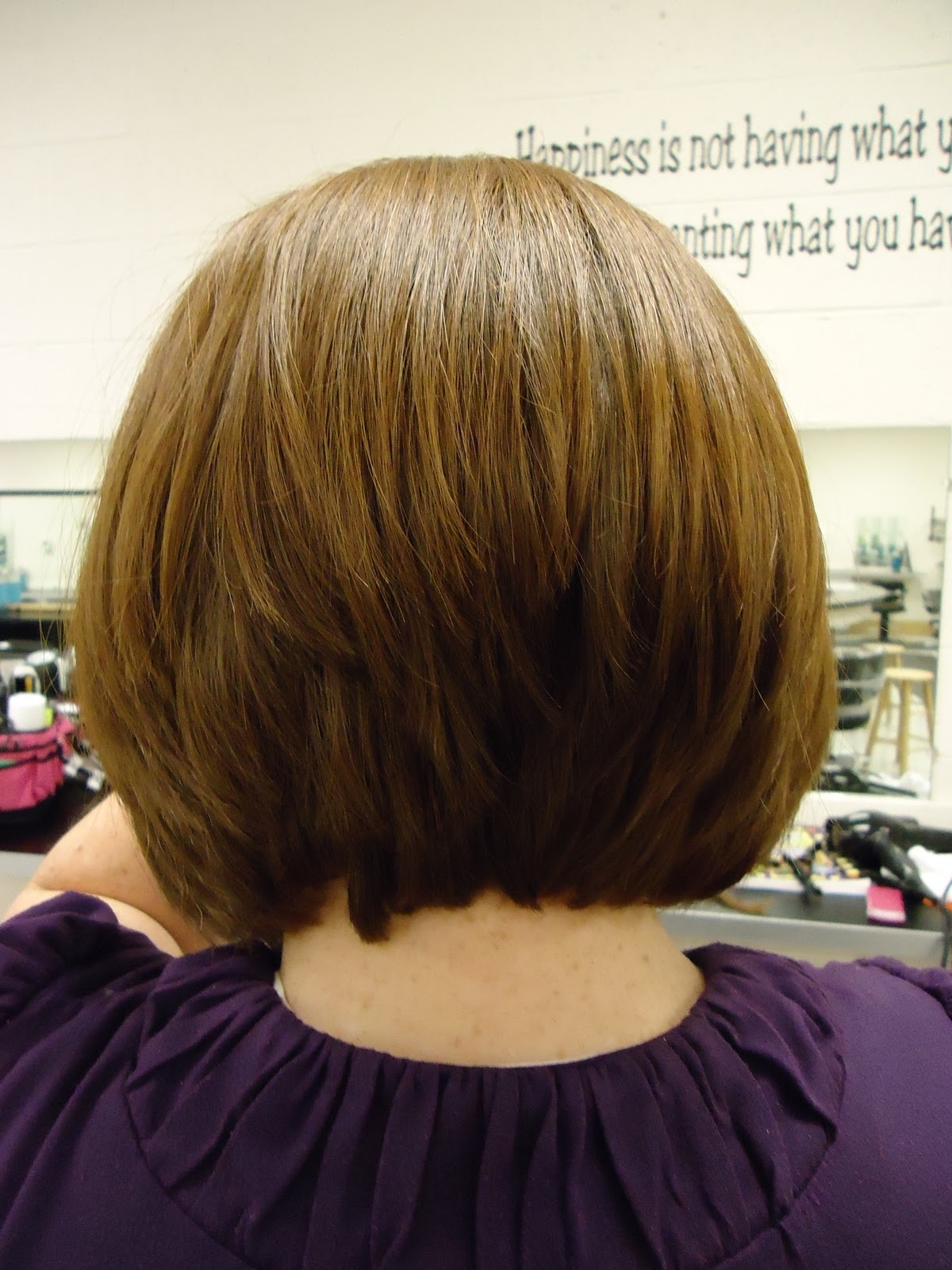 Short Bob Hairstyle From The Back View Graduated Bob