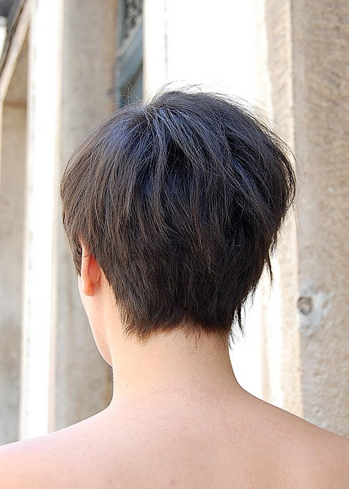 Back View Short Haircuts 22