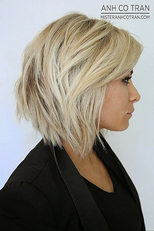 Images Of Short Layered Bob Hairstyles New Short Haircuts Without ...