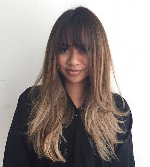 1 Long Brown Layered Ombre Hair