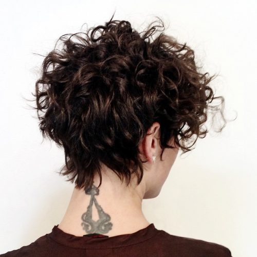 Curly Pixie Hair 15