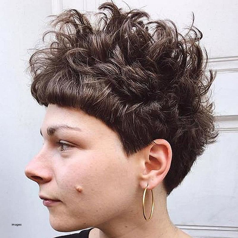 Short Curly Pixie Hairstyles 2018 Awesome Curly Pixie Haircuts For ...