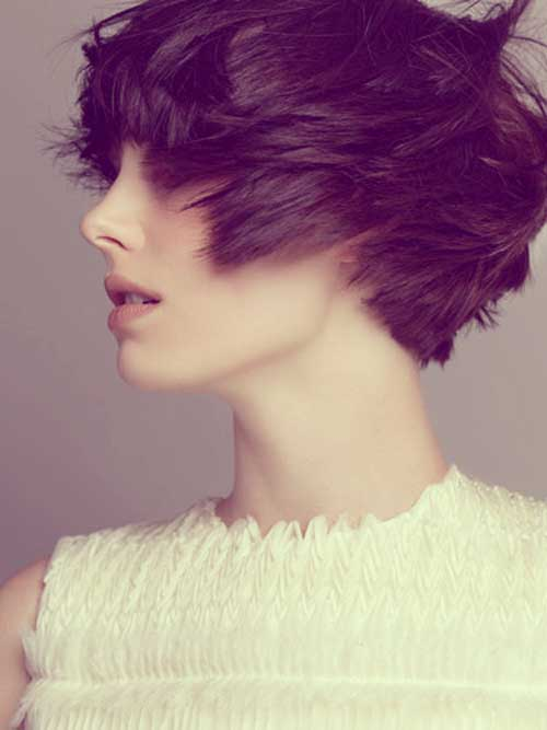 Short Haircuts For Thick Hair 17